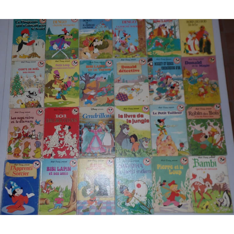 Lot De 24 Livres Walt Disney
