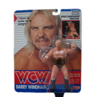 Catch WCW : Barry Windham
