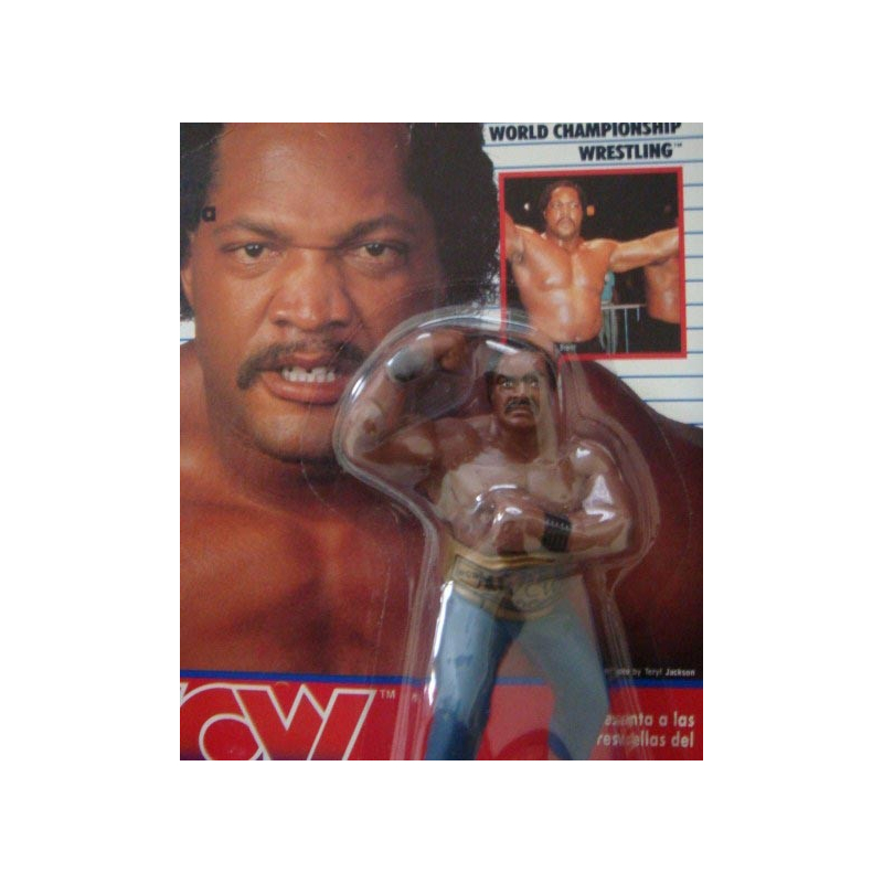 Catch WCW : Ron Simmons